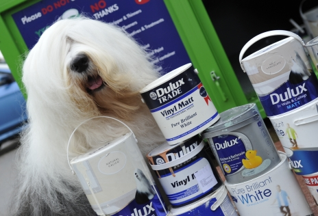 Supported by AkzoNobel, the owners of Dulux, this Community RePaint centre is using pioneering technology to transform 'waste' paint into a brand new, quality paint product at a community friendly price